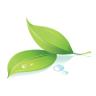 logo-e1401697776626
